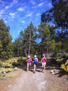 Pico Las Nieves- Los Hornos4
