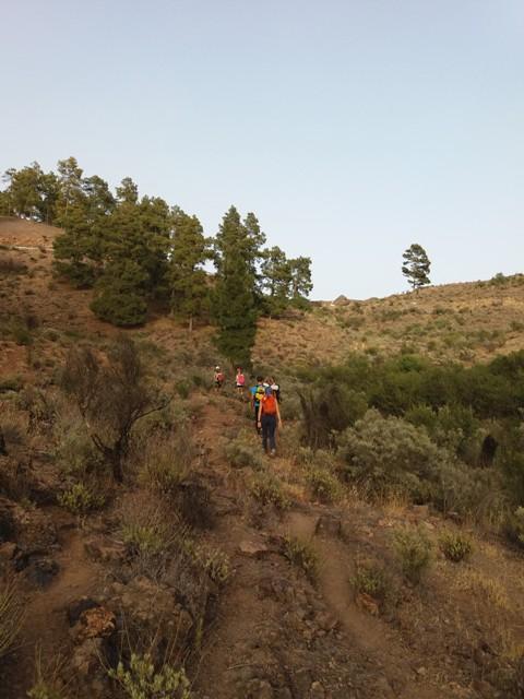 20160624 195738 gran canaria trekking - Redondo de guayedra ...