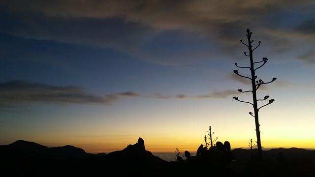 20170610 212455 gran canaria trekking - Redondo de guayedra ...