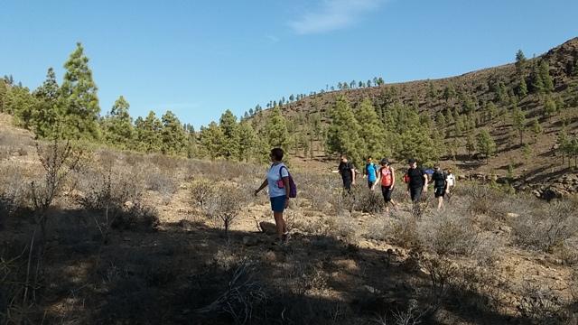 20171111 140835 gran canaria trekking - Redondo de guayedra ...