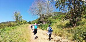 Finca y pico Osorio